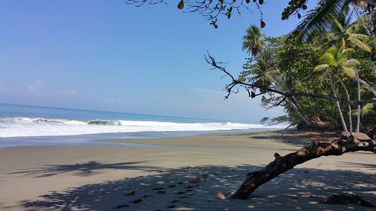 El Remanso Lodge: Have the beach all to yourself!