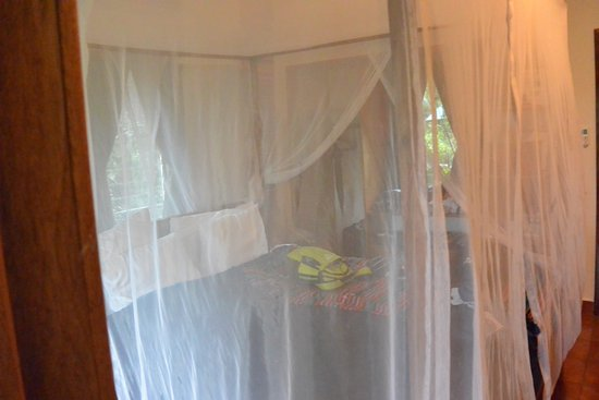 Mariposa Jungle Lodge: King bed with netting down