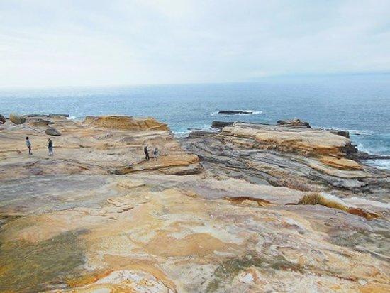 日置の千畳敷 岩の造形美 - Foto di Senjojiki, Shirahama-cho - TripAdvisor
