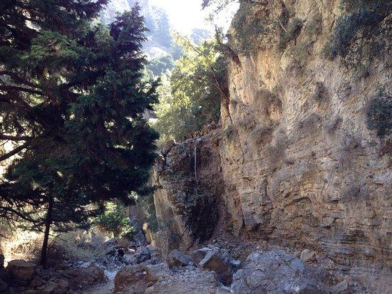 Kreta, Grækenland: photo2.jpg