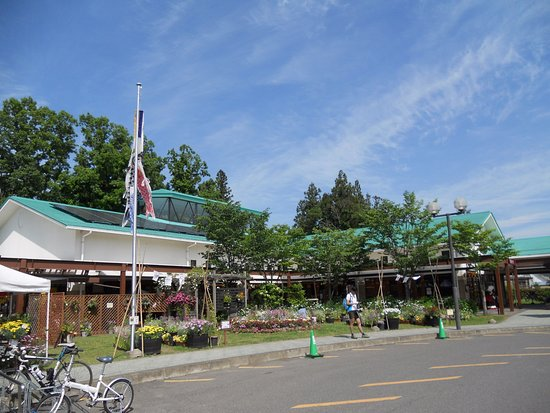 Akiu Sato Center