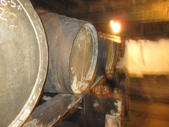 Martock, UK: barrels of cider