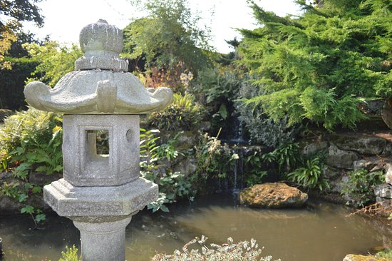 Mount Ephraim Gardens: Japanese gardens