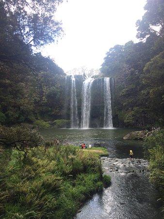 Whangarei, Yeni Zelanda: photo2.jpg