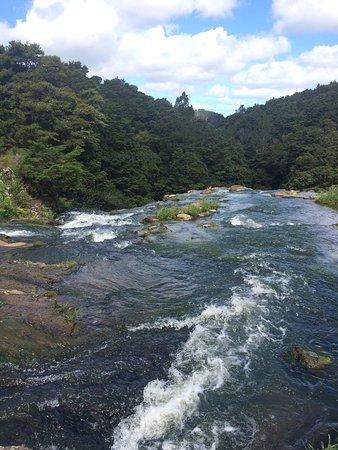 Whangarei, Yeni Zelanda: photo3.jpg