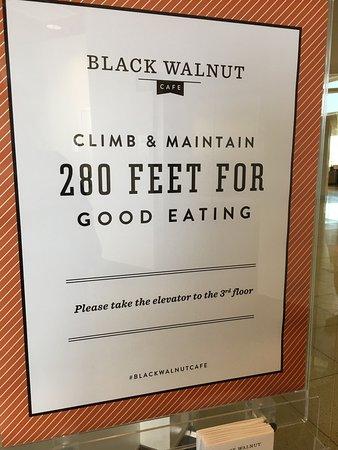Black Walnut Cafe Conroe Tx