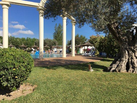 Bild fr 229 n seaclub mediterranean resort puerto alcudia tripadvisor