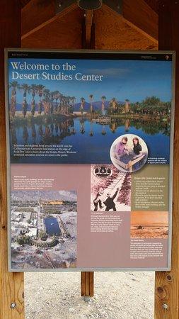 Placard depicting the original Soda Springs.