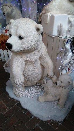 Glencarse, UK: Polar Bears