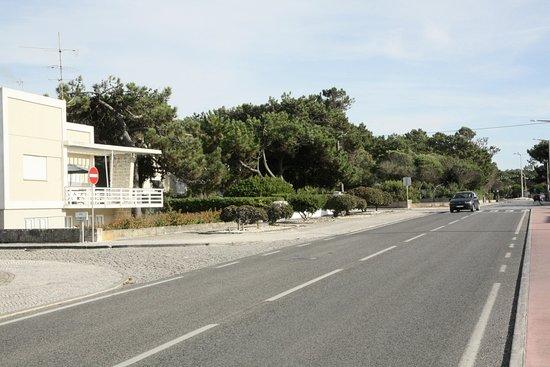 Marinha Grande, Португалия: L'avenue du phare, entre mer et forêt.