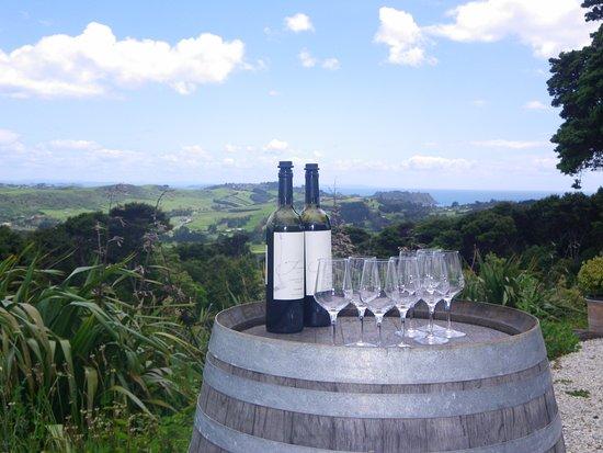 Waiheke Island, New Zealand: view from batch winery