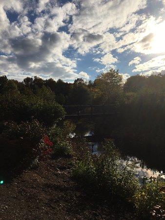 Bethel, NY: photo3.jpg