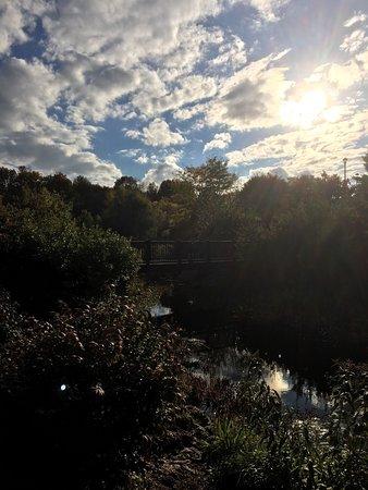 Bethel, NY: photo4.jpg