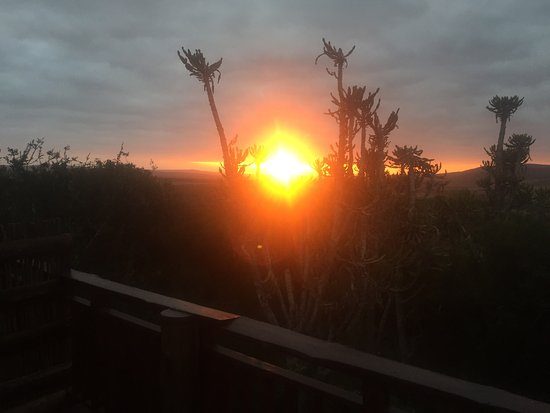 Addo, Afrika Selatan: Exotik accomodation