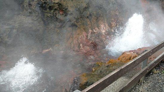 Reykholt, Islanda: Hot spring