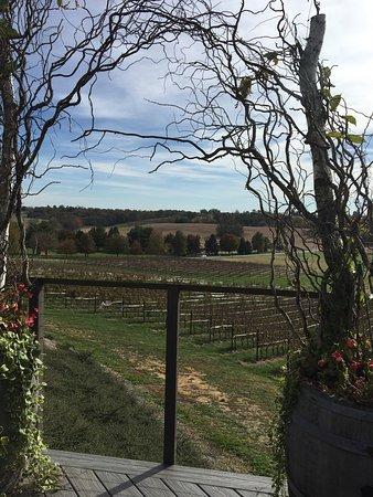 Mount Joy, PA: Winery