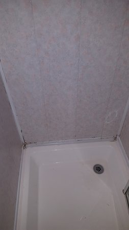 The Beeches Hotel, Blackpool: Mould in bathroom
