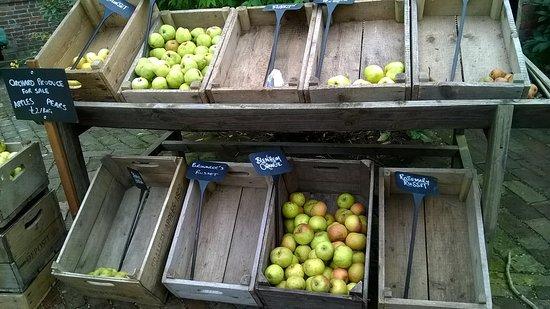 Burwash, UK: étal de pommes de variétés anciennes près de la boutique