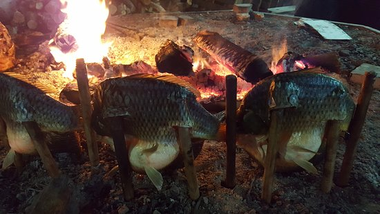 "Marina ""مارينا"" : Grilling Fish"
