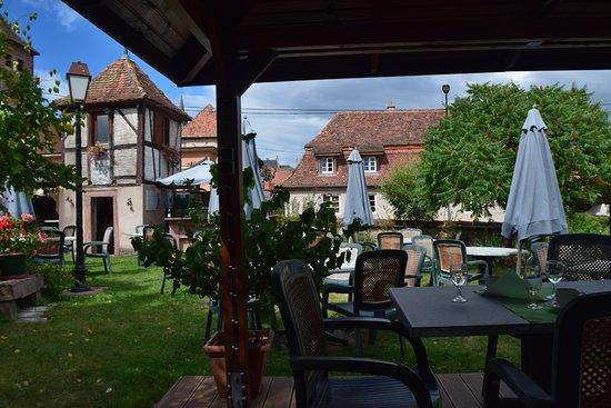Dambach-la-Ville, France: garden