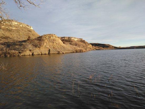Mineola, Teksas: Disfruta de un día de  campo  junto a tus amigos y mascotas