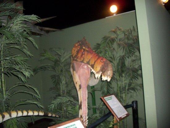 Foto de Branson Dinosaur Museum