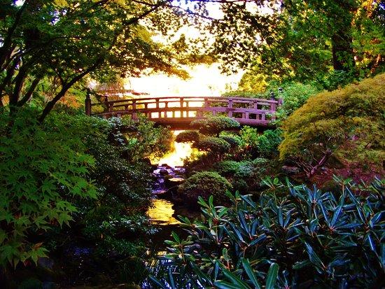 The fountain picture of washington park portland for Garden fountains portland oregon