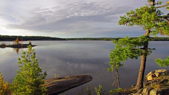 Massasauga Provincial Park: View from our campsite
