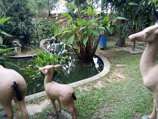 Sonalong Boutique Village & Resort: fish pond