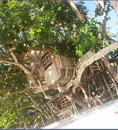 Chema S By The Sea Beach Resort