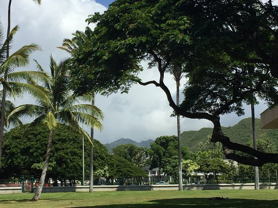 Discover Hawaii Tours: photo6.jpg
