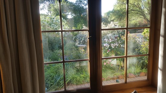 Country Pleasures B & B : View of Rose garden