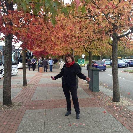 Strensham, UK: Autumn time