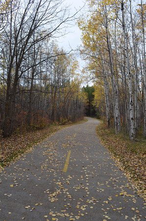 Manitoba, Kanada: walk, run, bike, or blade