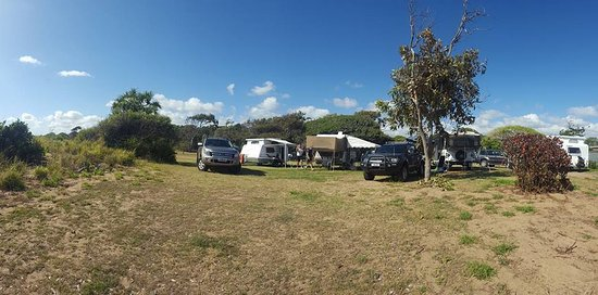 Powered campsites 79, 80 81 Moore Park Beach Holiday Park