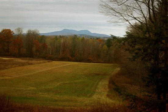 Herman Melville's Arrowhead : View of Mount Greylock from Melville's desk. He said it reminded him of a whale.