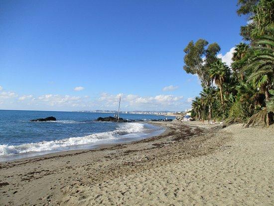Playa Las Viborillas