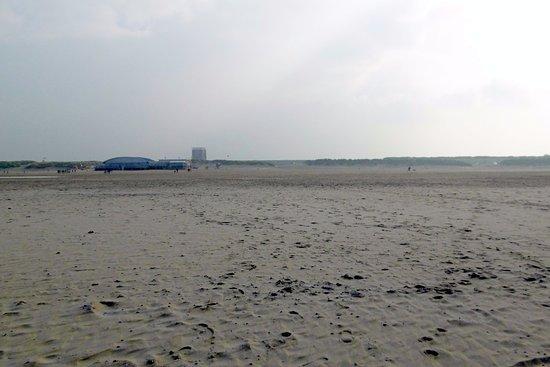 Plage de brouwersdam picture of center parcs port for Port zelande center parcs review