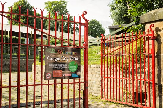 Gorgie City Farm & Cafe