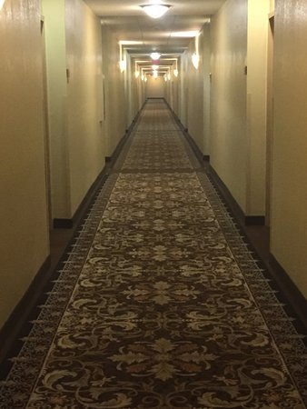Staybridge Suites Orlando Airport South: Corridors are spooky and too long