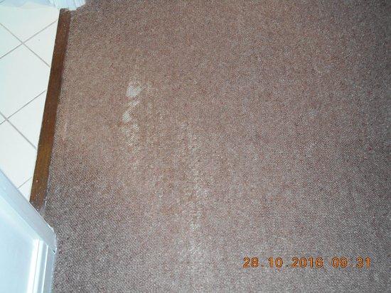 Bramhope, UK: Worn carpet Room 517