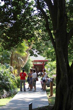 Saint-Cyprien, Francia: Visite guidée au Jardin des Plantes, tous les mercredis pendant l'été.