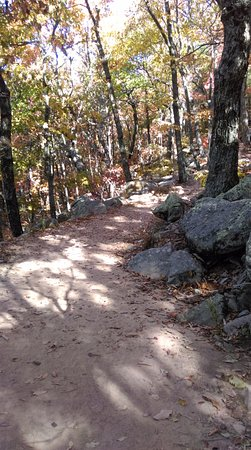 Chatsworth, GA: The loop trail past the fire tower is rocky and gorgeous!