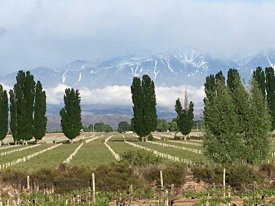 Cavas Wine Lodge Photo