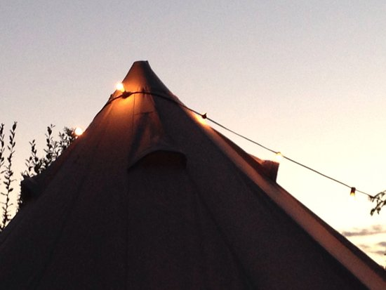 Granville, OH: The glamping tent tucked in the pine forest clearing