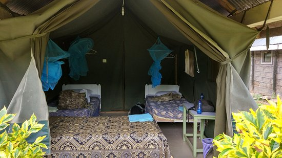 Foto Rhino Tourist Camp