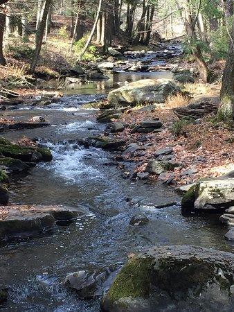 写真Delaware Water Gap National Recreation Area枚