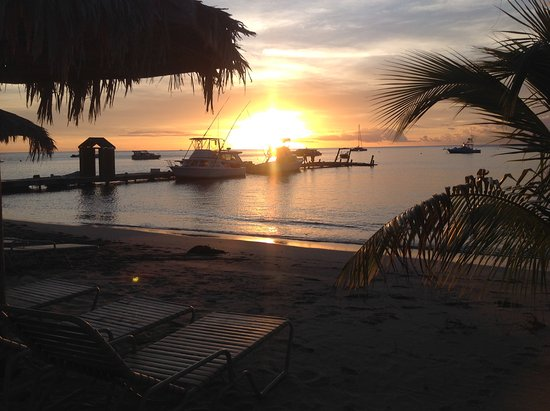 Newcastle, Nevis: Great sunsets