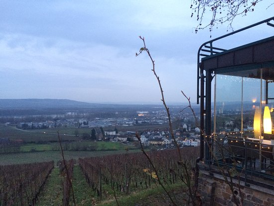 Geisenheim, Germany: View from the restaurant; we were seated at the corner table visible in the photo