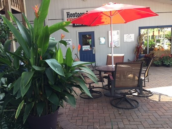 Hontoon Landing Resort & Marina: Dining on Hummingbird Plaza